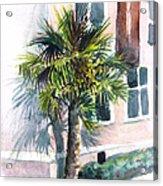 Museum Palm Acrylic Print