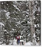 Musher In The Forest Acrylic Print