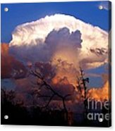 Mushroom Cloud At Sunset Acrylic Print by Doris Wood