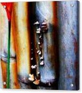 Mushroom On Bamboo 2 Acrylic Print