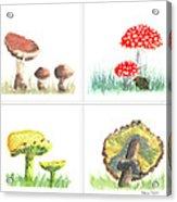 Mushrooms On Parade Collage Acrylic Print