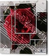 Musical Rose Montage Acrylic Print