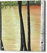 Muskoka Lagoon Acrylic Print