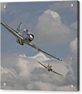 Mustang Pair Acrylic Print by Pat Speirs