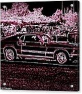 Mustang Rose Acrylic Print