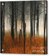 Mute Dog Forest Triptych Panel 1 Acrylic Print