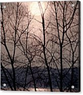 Muted Sunrise Acrylic Print