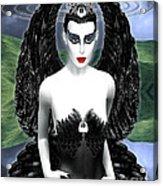My Black Swan Acrylic Print