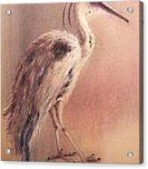 My Crane Acrylic Print