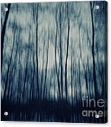 My Dark Forest Acrylic Print