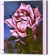 My First Rose Acrylic Print