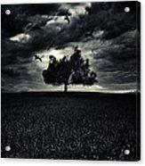 My Friends Acrylic Print by Stelios Kleanthous