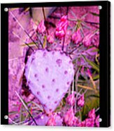 My Heart Pains Me To Be Without You 3 Acrylic Print