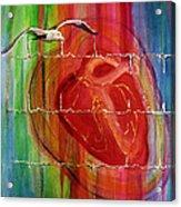 My Hearts  Echo Acrylic Print