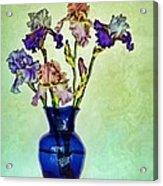 My Iris Vincent's Genius Acrylic Print