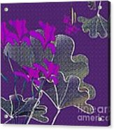 My Irises Acrylic Print