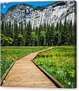 My Kind Of Trail Acrylic Print
