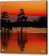 My Louisiana Heart Acrylic Print