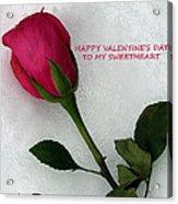 My Love To Keep You Warm Acrylic Print