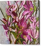 My Magnolias Bliss Acrylic Print