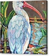 My One And Only Egret Acrylic Print