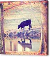 My Own Paradise Acrylic Print