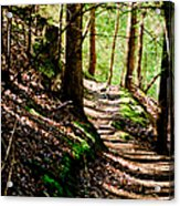 My Path Acrylic Print