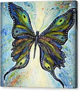 My Peacock Butterfly Acrylic Print by Elena  Constantinescu