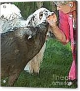 My Pig And Dog Friends Acrylic Print by Artist and Photographer Laura Wrede