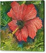My Quiet Place-hibuscus Flower Acrylic Print