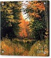 My Secret Autumn Place Acrylic Print by Michael Swanson