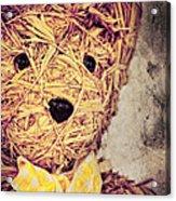 My Teddy Bear Acrylic Print