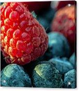 My Very Berry Acrylic Print