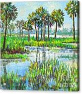 Myakka Lake With Palms Acrylic Print