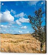 Mynydd Hiraethog Acrylic Print