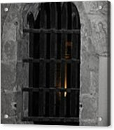Mysterious Face In Cell Acrylic Print