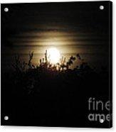 Mysterious Moonlight Acrylic Print