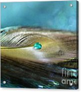 Mysterious Turquoise Acrylic Print