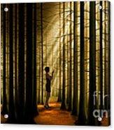 Mysterious Wood Acrylic Print