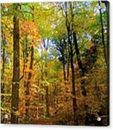 Mystic Fall Acrylic Print
