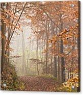 Mystic Woods Acrylic Print