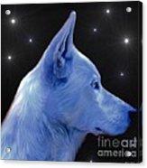 Mystical Wolf Acrylic Print