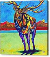 Mythical Elk Acrylic Print