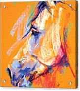 Naivety Acrylic Print