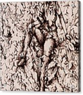 Nan Dungortheb Detail Acrylic Print