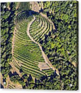 Napa Valley From Above Acrylic Print