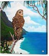 Napali Pueo Acrylic Print
