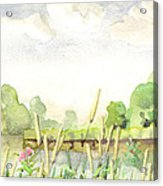 Napanee River West Acrylic Print
