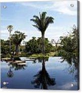 Naples Botanical Garden  3083 Acrylic Print