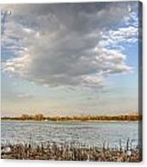 Narew River Near Serock In The Vicinity Of Warsaw Acrylic Print